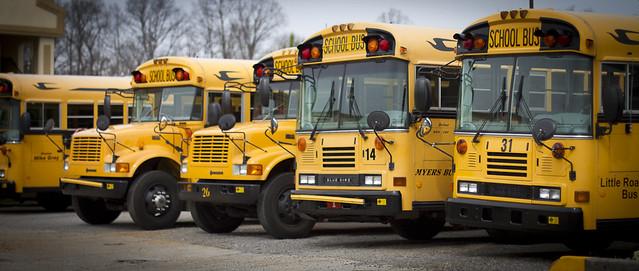 School Bus ( dhendrix73 )