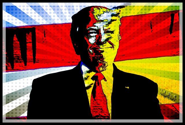 Donald Trump Divided Country ( David Bruyland )