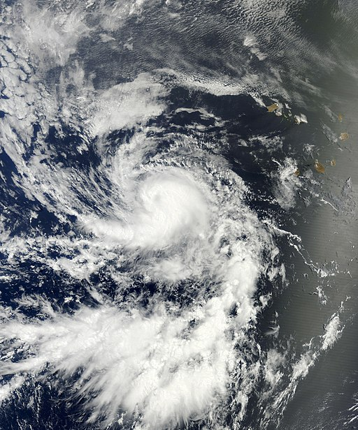 Tropical Storm Dorian ( NASA, MODIS/ LANCE )