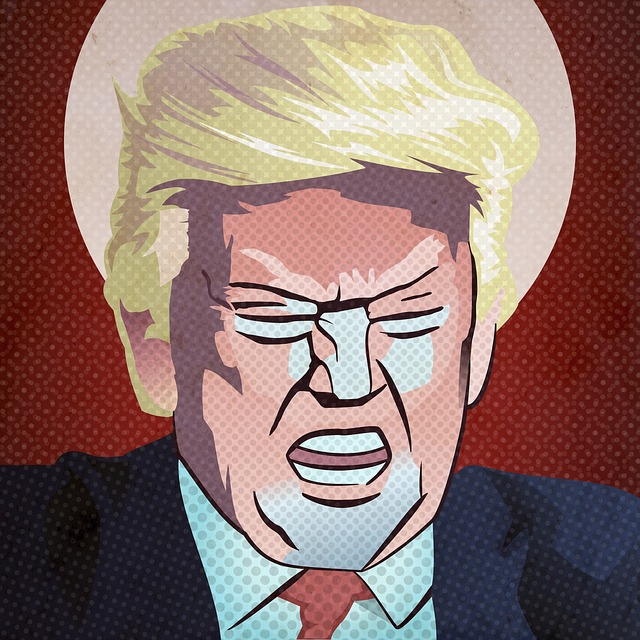 Donald Trump ( gfk DSGN )