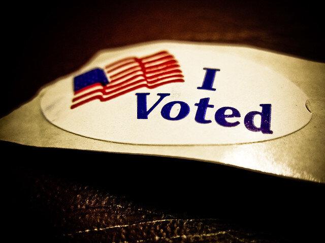 I Voted! ( Vox EFX )
