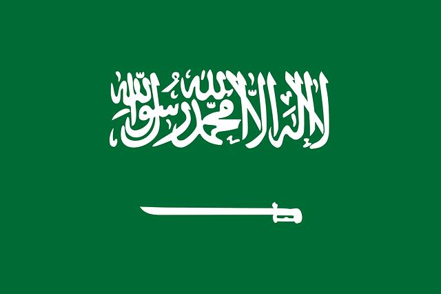 Flag of Saudi Arabia ( tarcisioefbarbosa0 )