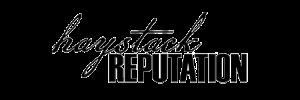 haystackreputation_logo_300x133.png