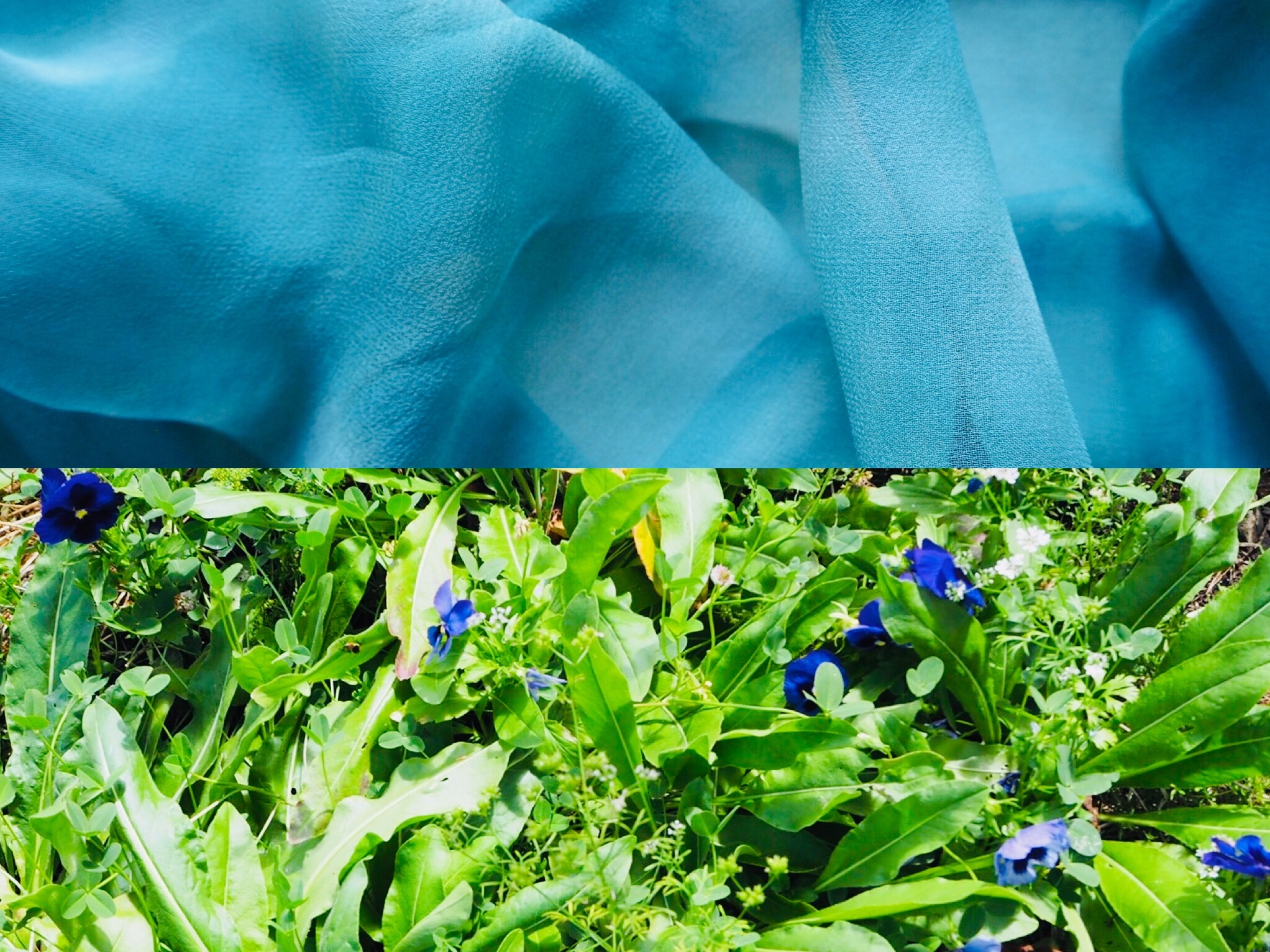 2019_What--Makes_Natural Dye Colours 6.jpg