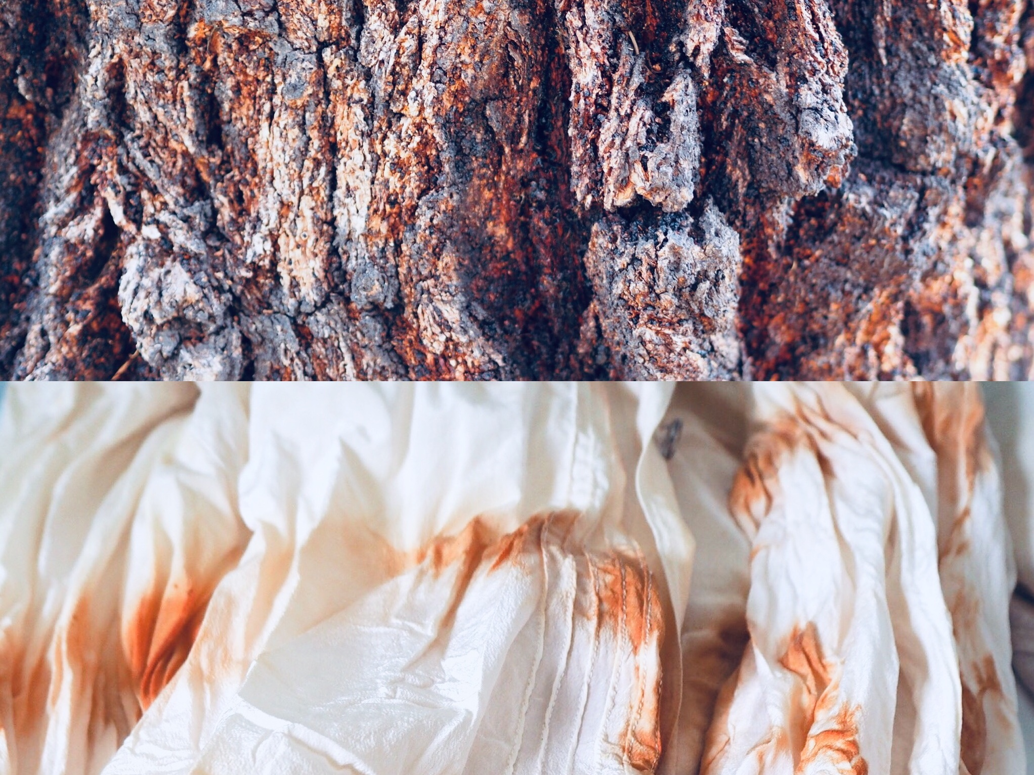 2019_What--Makes_Natural Dye Colours 9.jpg