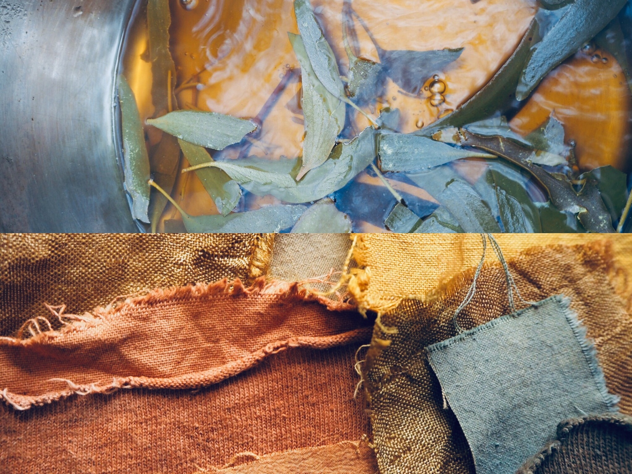 2019_What--Makes_Natural Dye Colours 10.jpg
