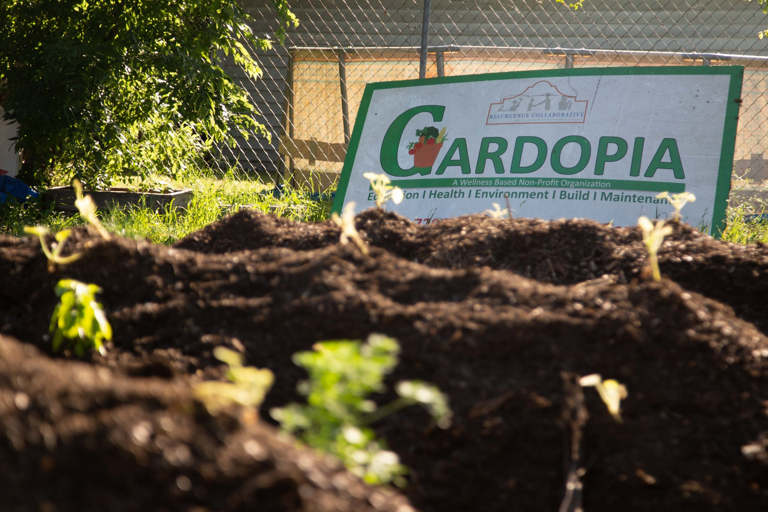 GardopiaVoteEvent-9713.jpg