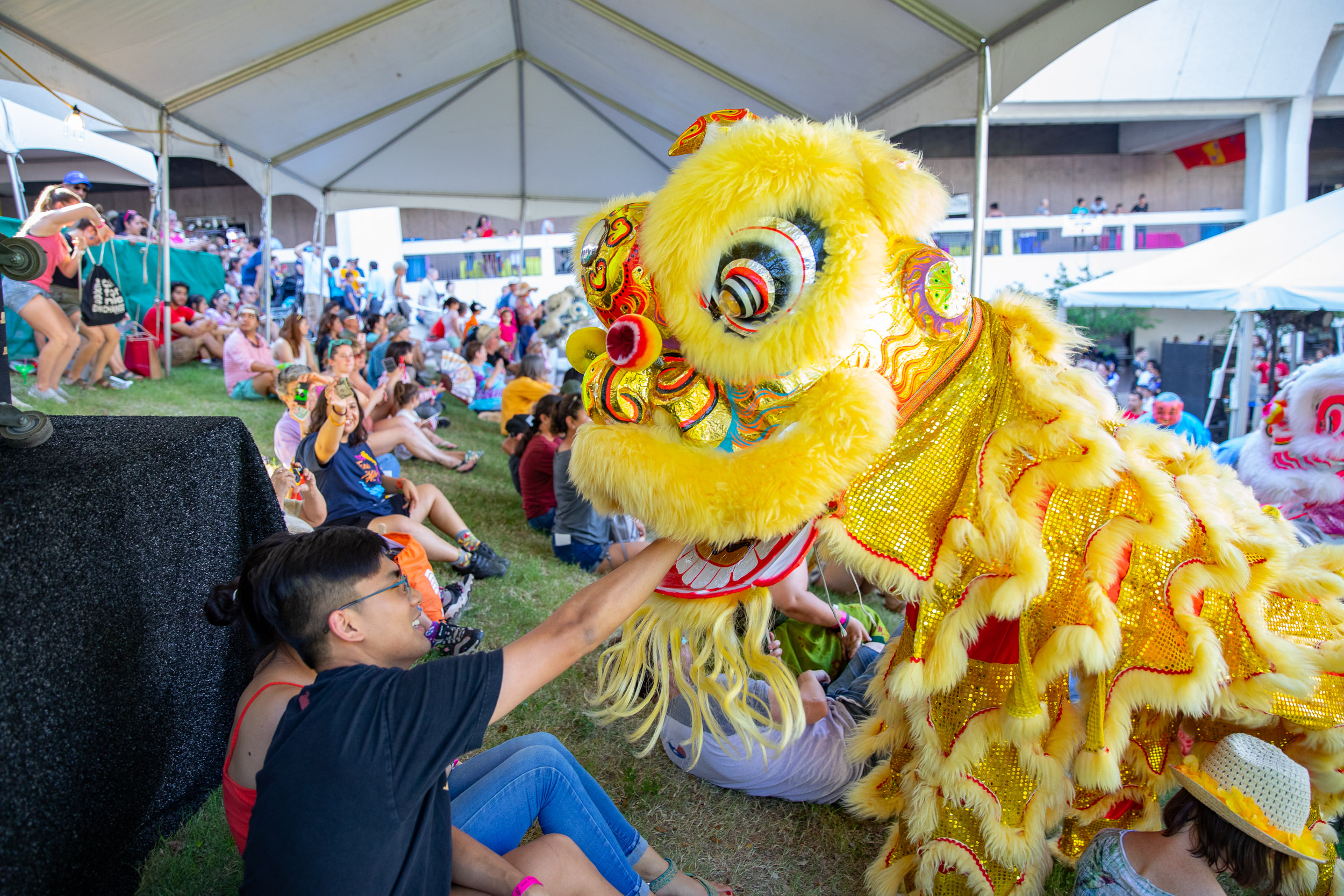 An attendee interacts with the traditional Lion Dance performers. (Photo by  Joel Pena  - Photographer, SA Sentinel)