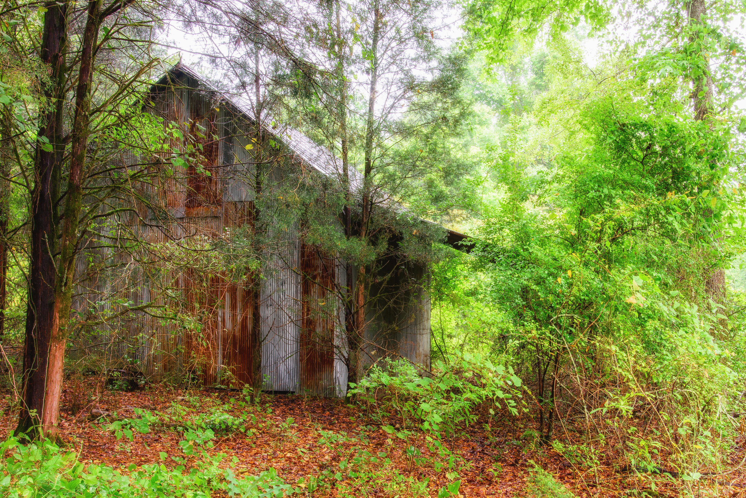 Rural Decay Structure 1.166
