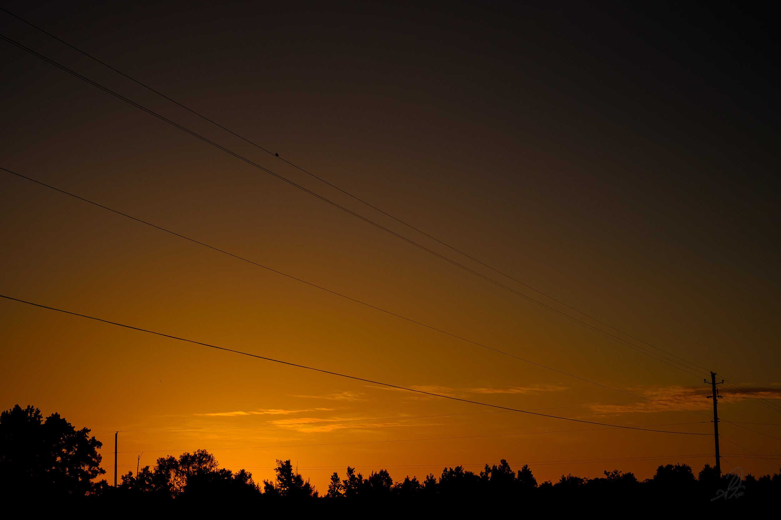 Power Line Sunrise