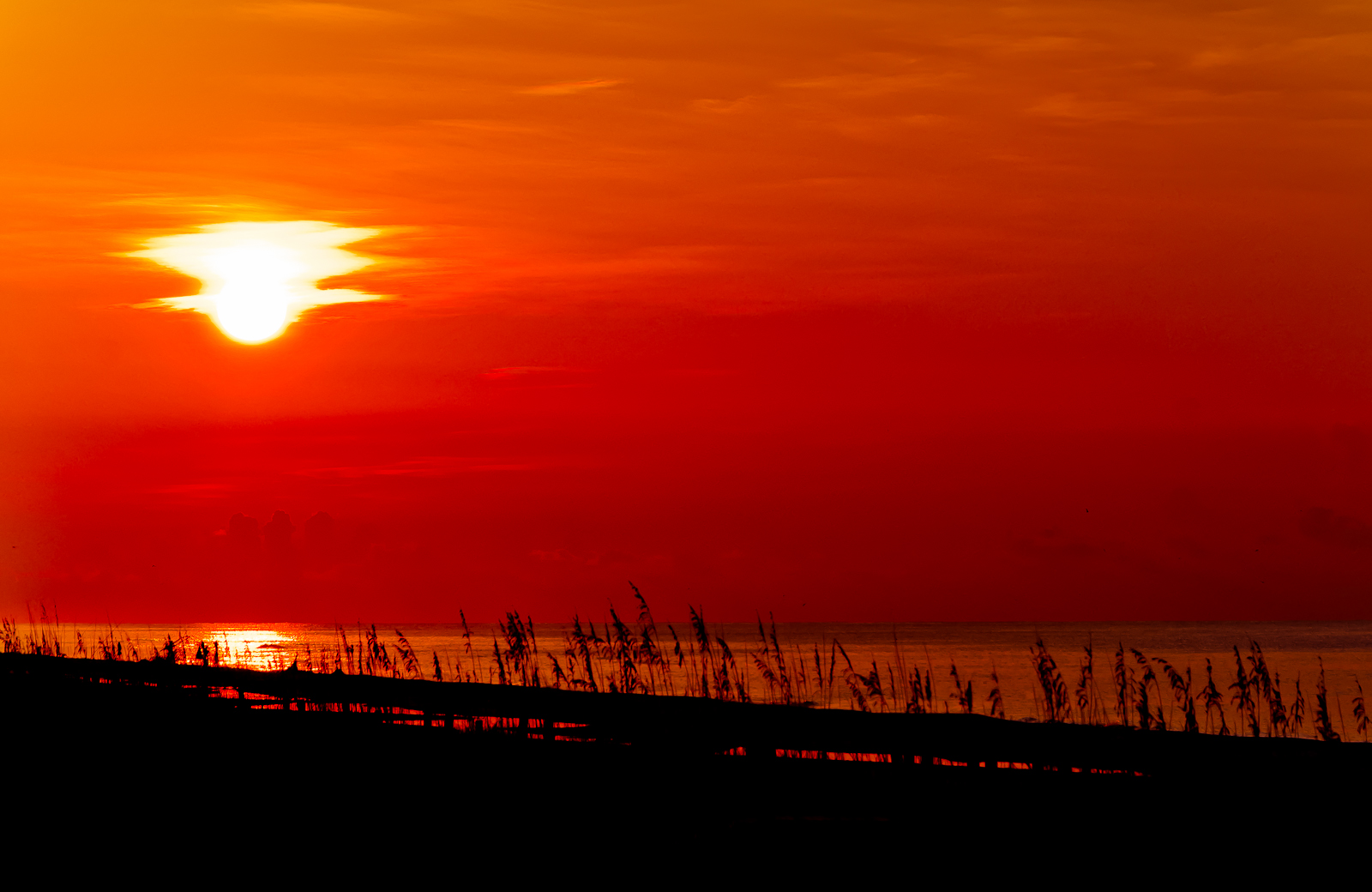 Project 365 [Day 264] Red Sun Rising Over the Gulf of Mexico