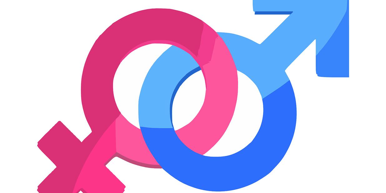 gender-312411_1280.png