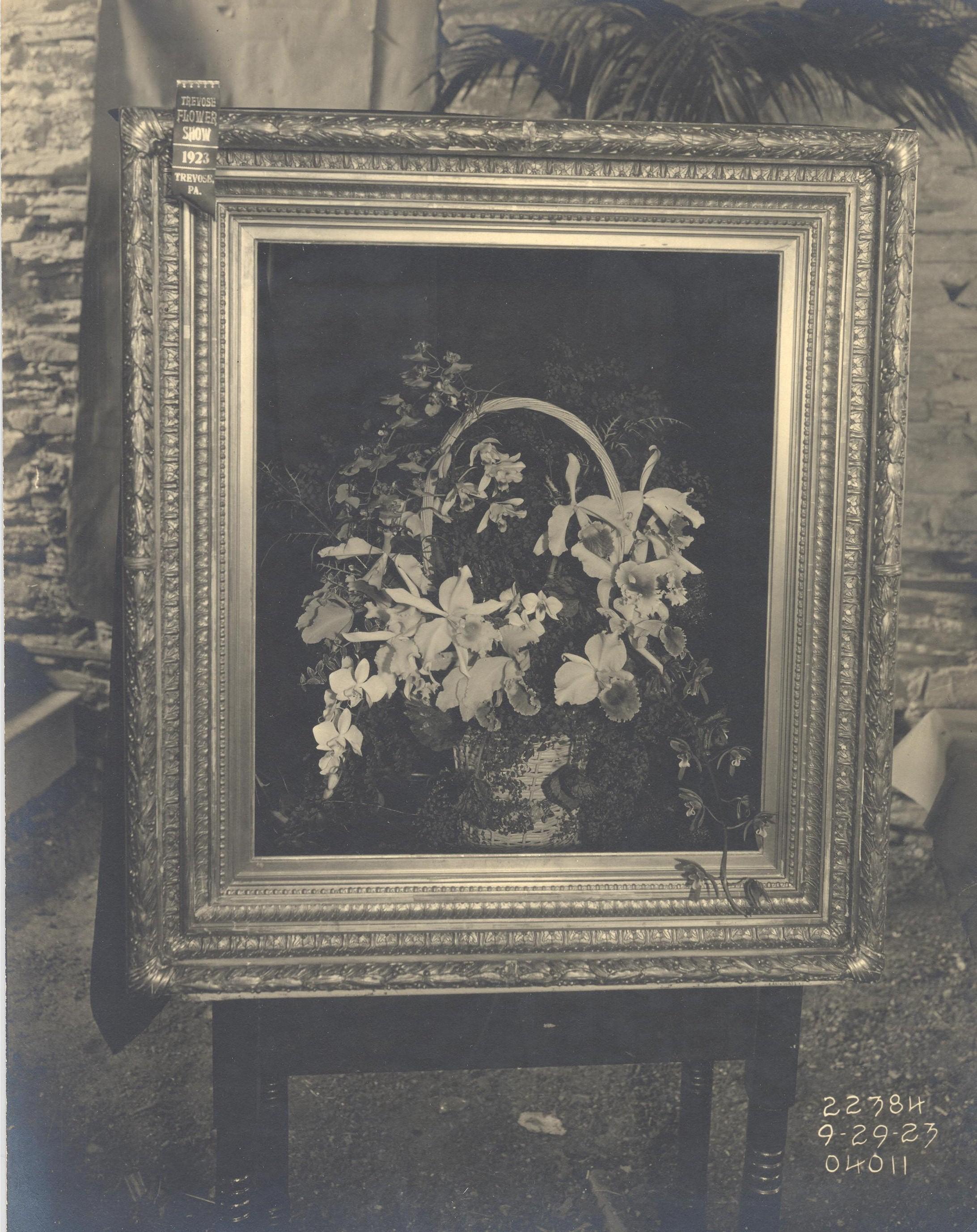 frame 1923.jpg