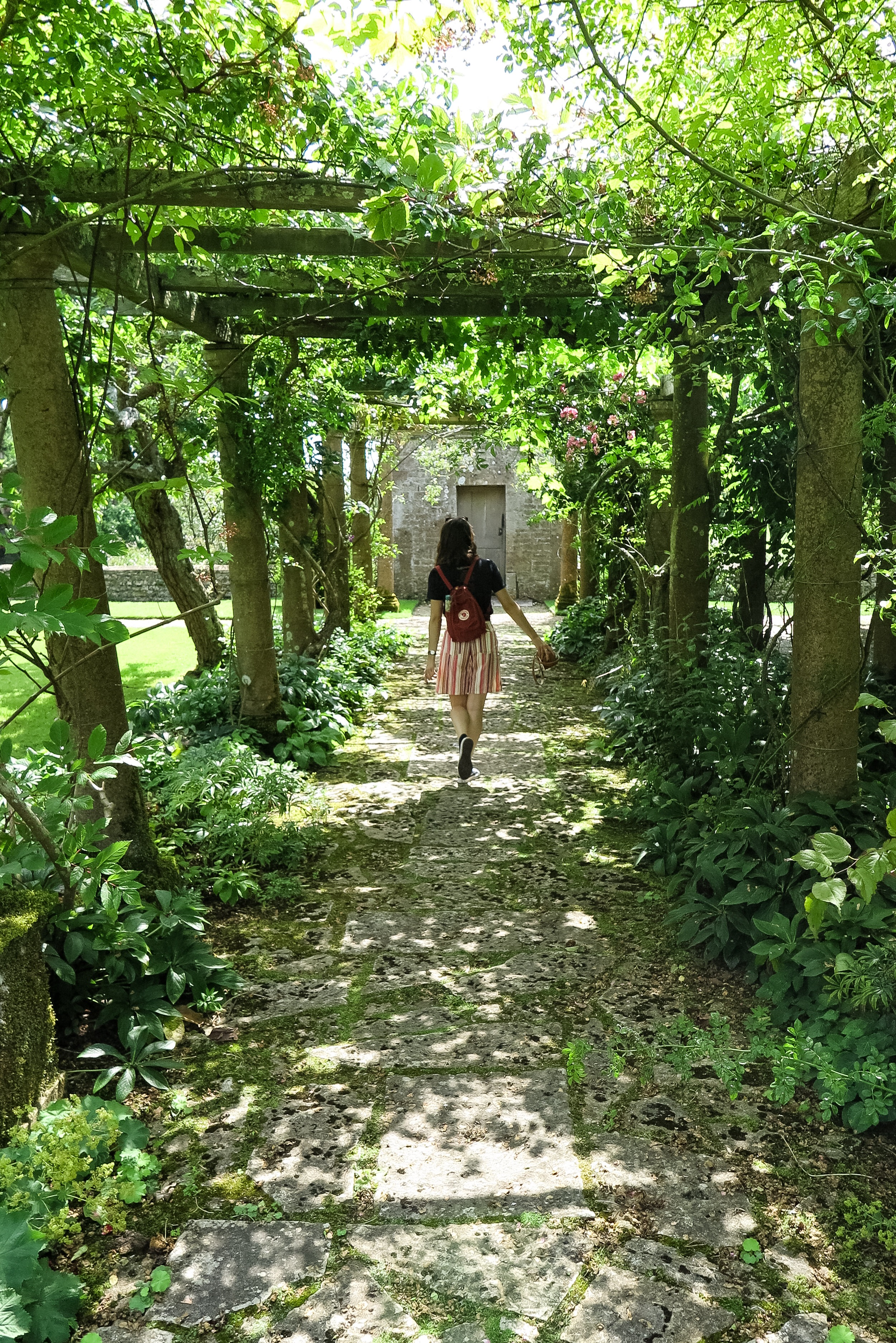 Walking under the pergola
