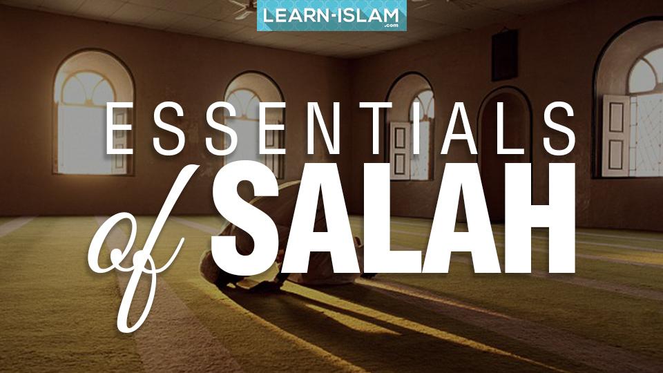 Essentials of Salah.jpg