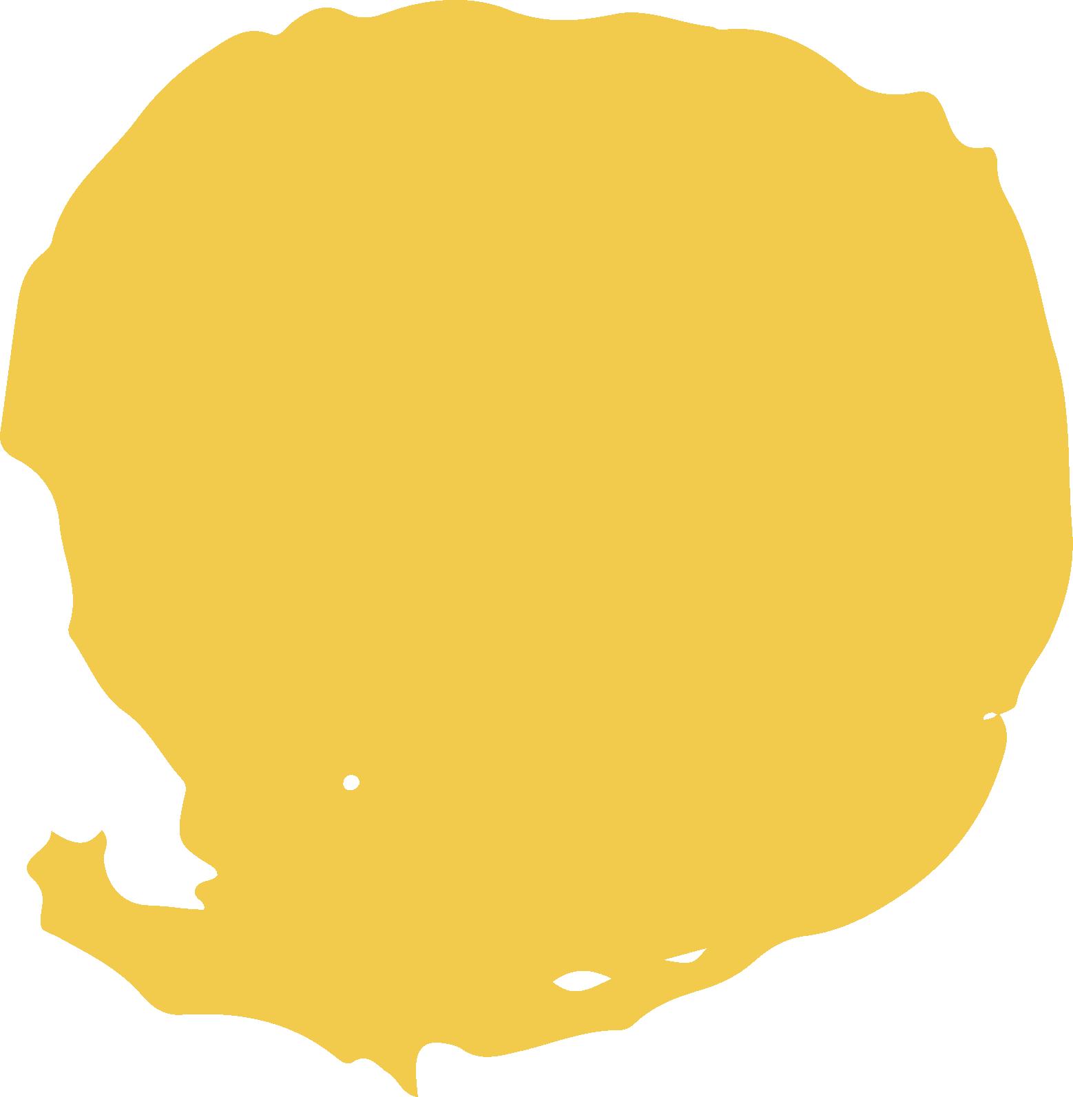 macchia gialla.png