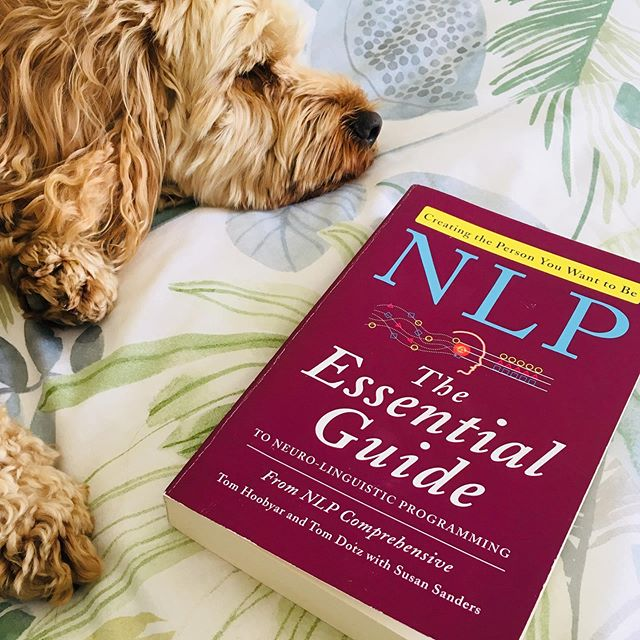 A perfect way to spend a Saturday morning 💙  Snuggled up with this one and reading this amazing book. I recently started studying NLP after being interested in it for ages. I'm learning so many brilliant techniques on shifting limiting beliefs and can't wait to bring this into my coaching practice. 📚 #nlp #nlptraining #nlpcoaching #limitingbeliefs #changeyourmindsetchangeyourlife #newthinking #nlptechniques #lifecoachingtips #lifecoaching #mindsetiskey #mindsetiseverything