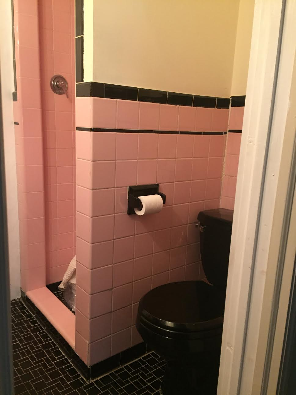 BEFORE- Shower & Toilet
