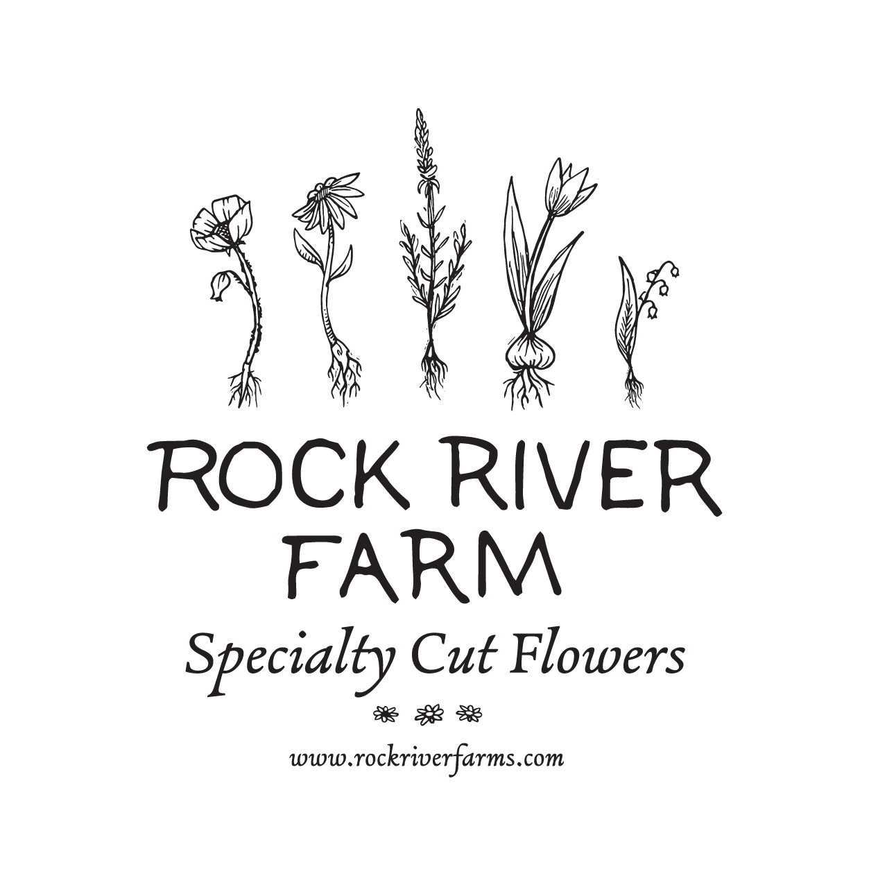 Final logo with website—always good to have a couple iterations, for a myriad of uses.