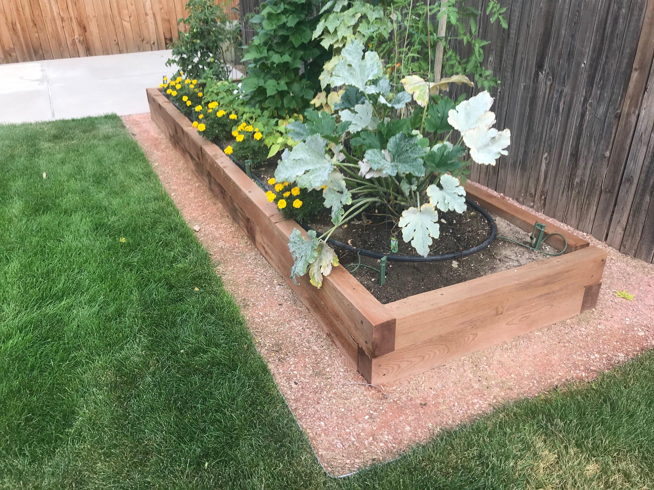 Hand-made planter box. 2019