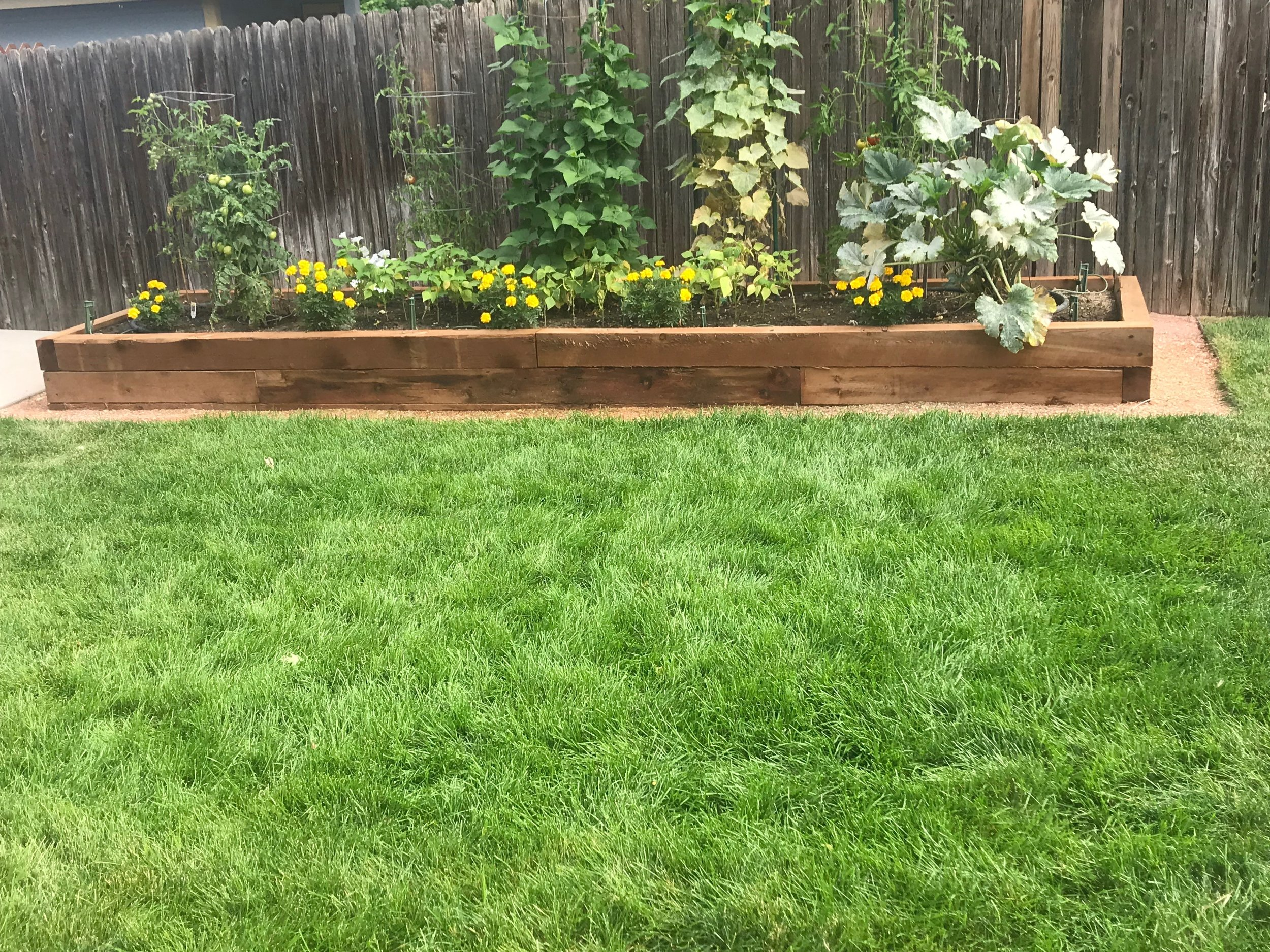 Planter box (hand made by Tri City) and surrounding sod job. 2019