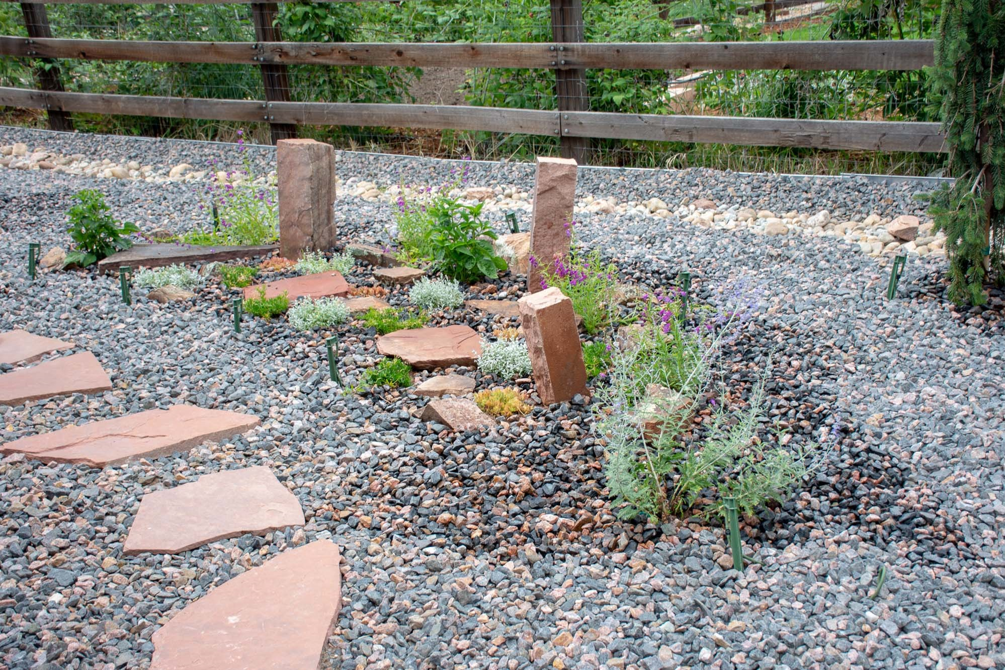 Xeriscape/Natural landscaping in Lyons, CO 2019
