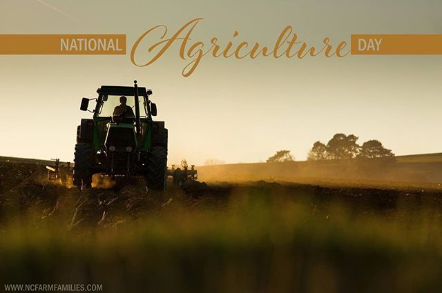 Agriculture is North Carolina's #1 industry! We want to celebrate such an awesome industry and all the people in it a little extra today! Happy National Agriculture Day!  #AgDay19 Why are you thankful for agriculture?