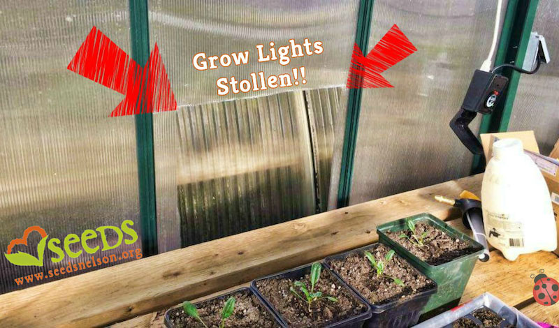 seeds-grow-lights-stolen.jpg