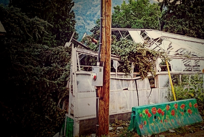 Jun. 30, 2015 - SEEDS greenhouse closed after tree falls through roof.