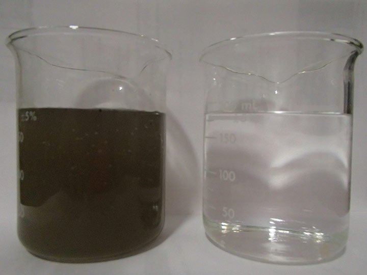 water_plant_10.jpg