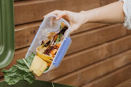 food_waste_solution.jpg