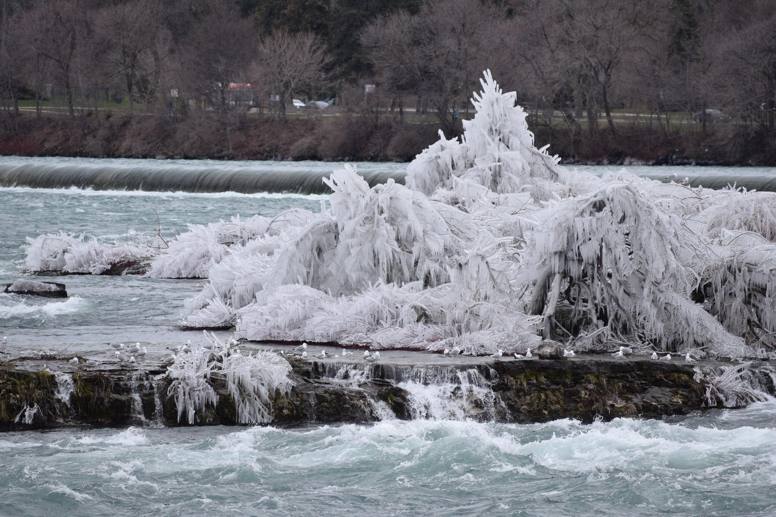 Niagara Falls (Day 2) 085