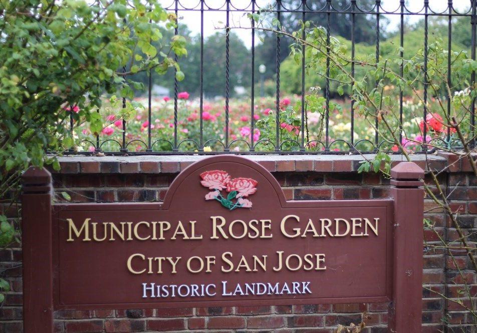 Municipal Rose Garden   Naglee & Dana Avenue  San Jose, CA 95126   Información Adicional