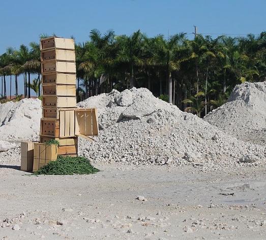 Untitled, 2015 wood, nails, beans. Homestead, FL
