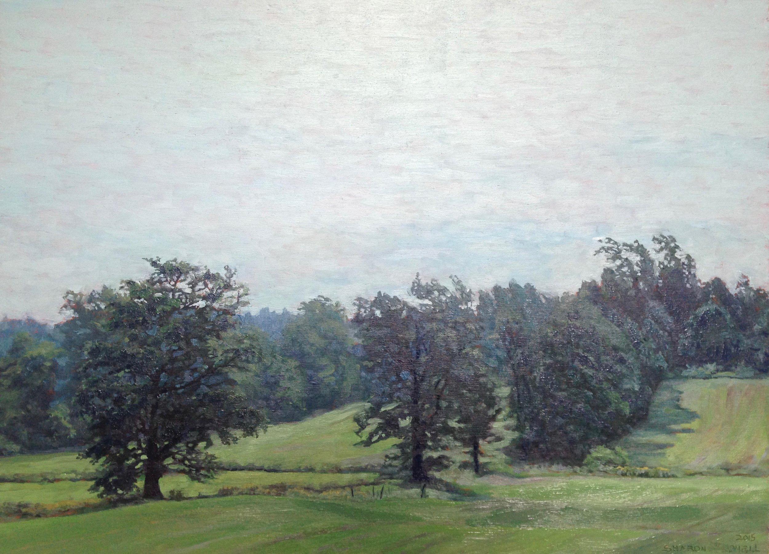 'Glengarry Fields'