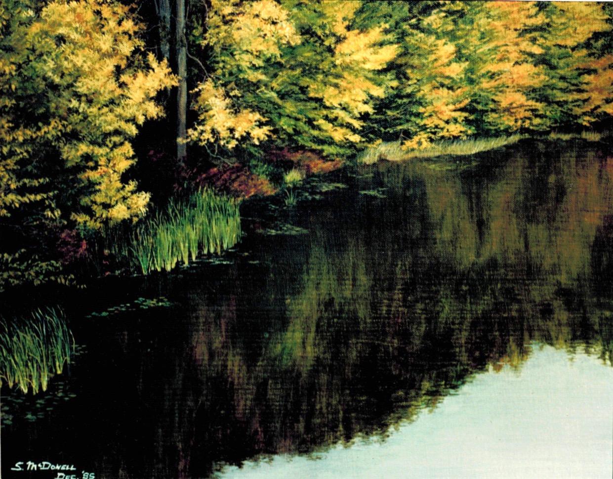 'Beaudette River Reflexions'