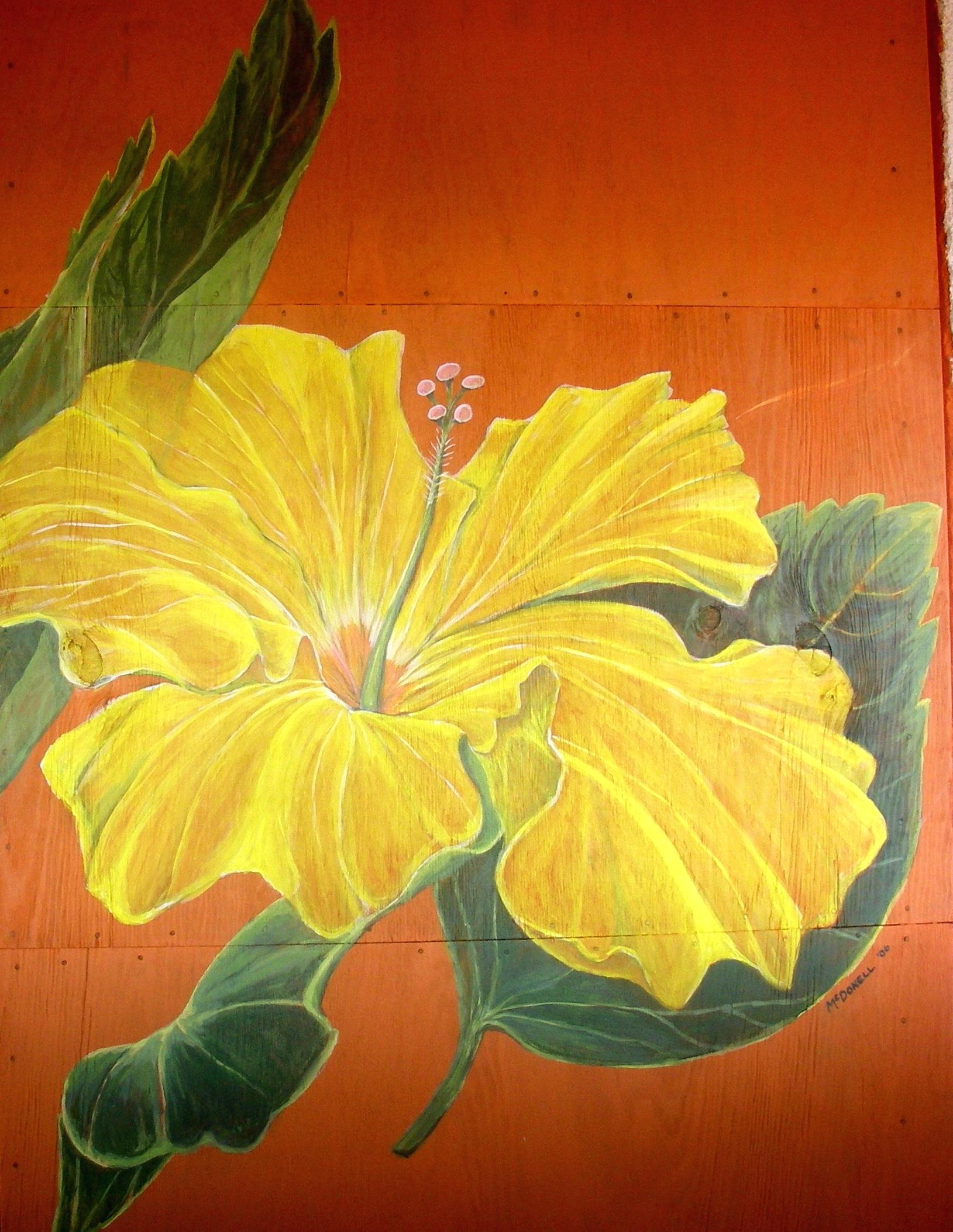 'Hibiscus at Huachinangas' (Mural)