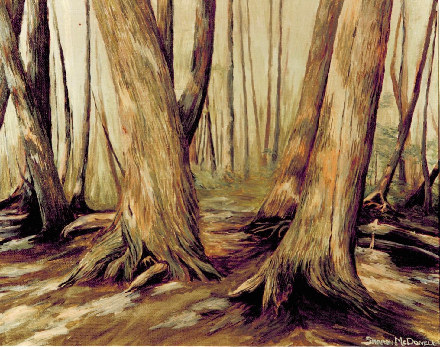 Cedars Along the  Cow Path