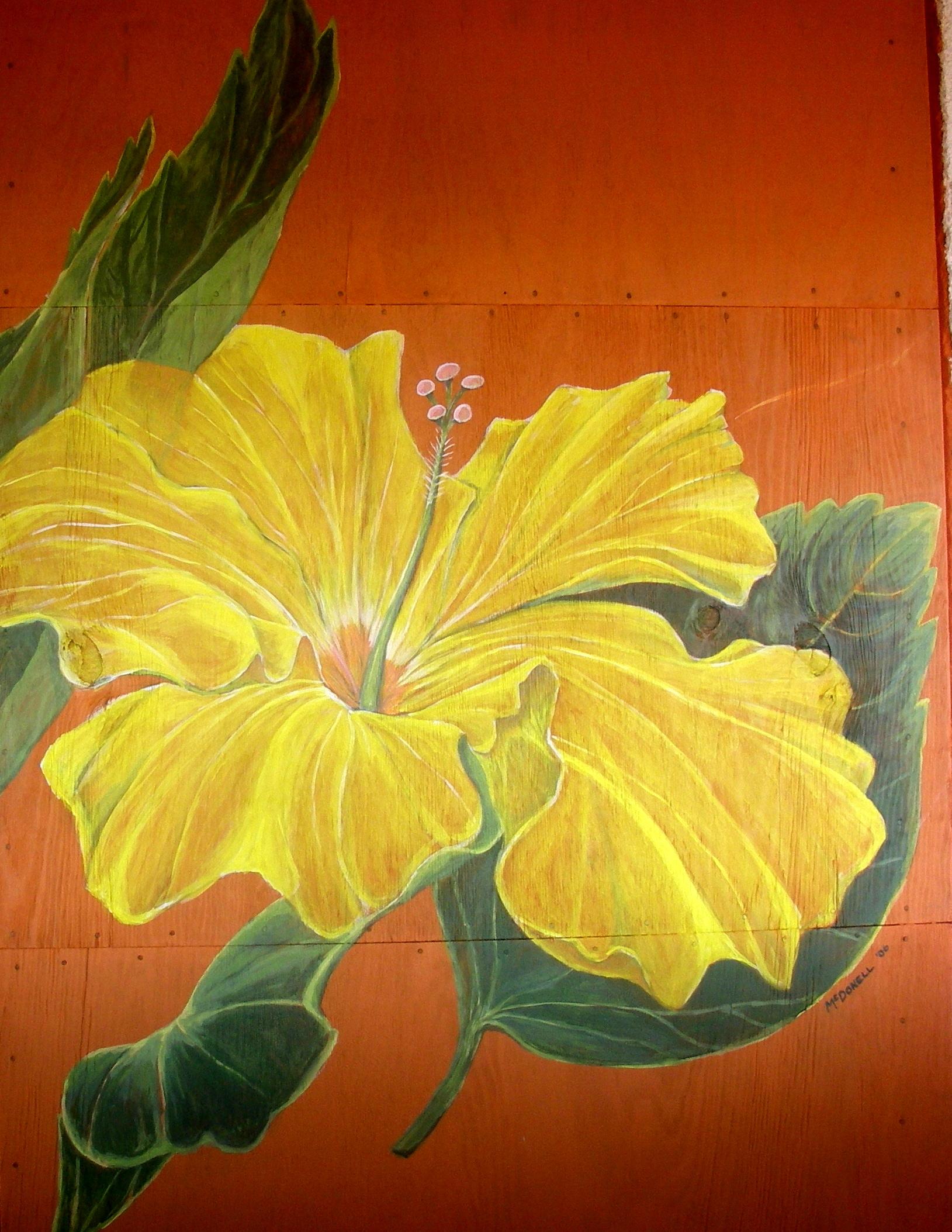 Hibiscus Mural in Troncones