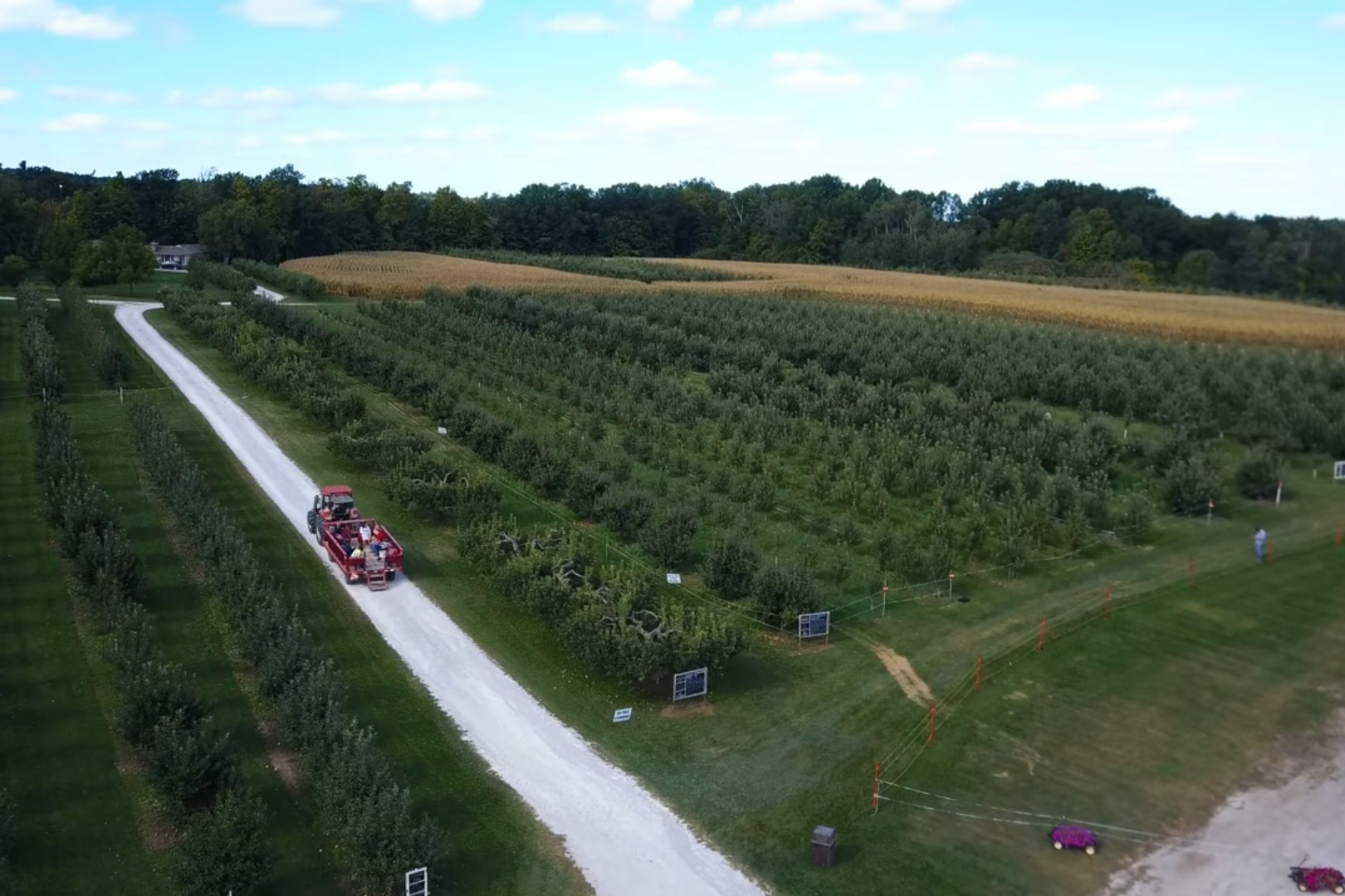 Pick your Own Apples - Starting August 20th 2019 Wheelbarrow Orchards will be open for the apple picking season offering- Apple Picking - Wagon Rides - Baked Goods - Harvest Goodies products - Fraser's Craft Cider - Farm Photo Opportunities - No Admission Fee -Fresh Pressed Cider - Fun For All Ages