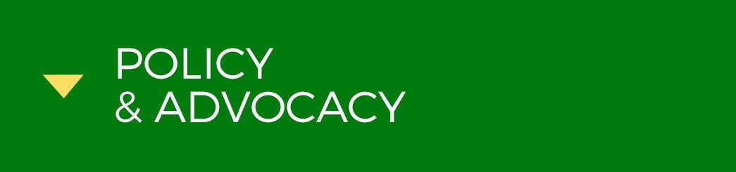 PolicyANDAdvocacy.jpg