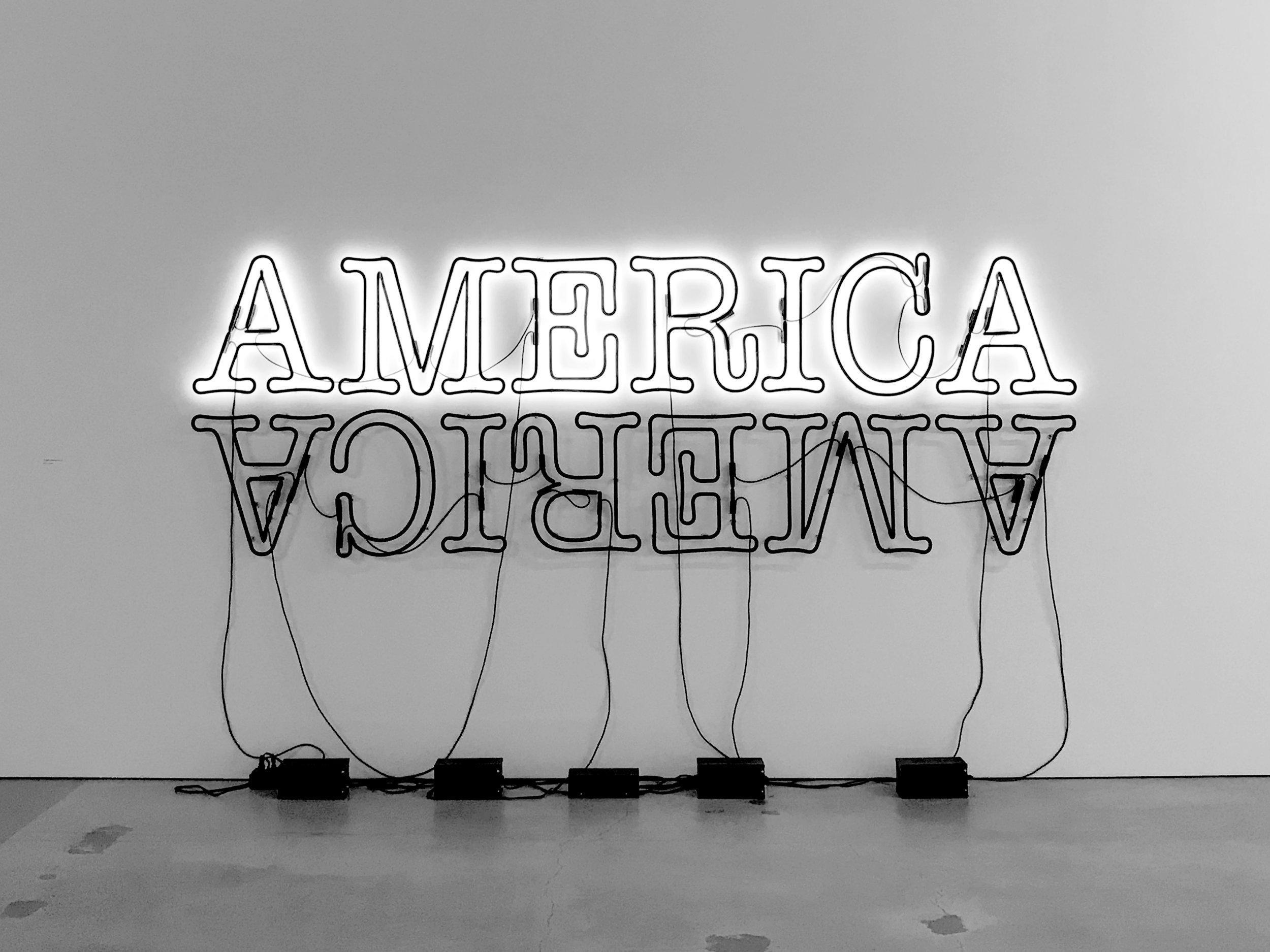 Glenn Ligon - Double America (II) (2014)