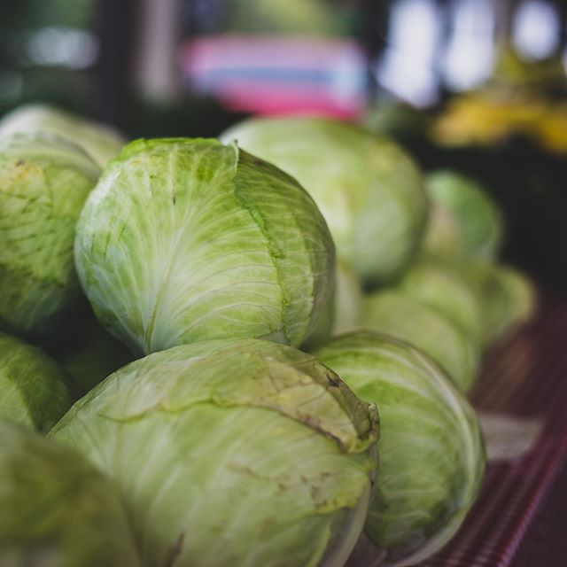 Soooo the idea of buying something from the farmers market is good! But I didn't have cash on me. Whoops! I would of picked up these awesome cabbages, maybe next time! What would you cook with these cabbages? #cabbage #farmersmarket #farmtoplate #vintonfarmersmarket #foodphotoshoot #roanokeva #vintonva