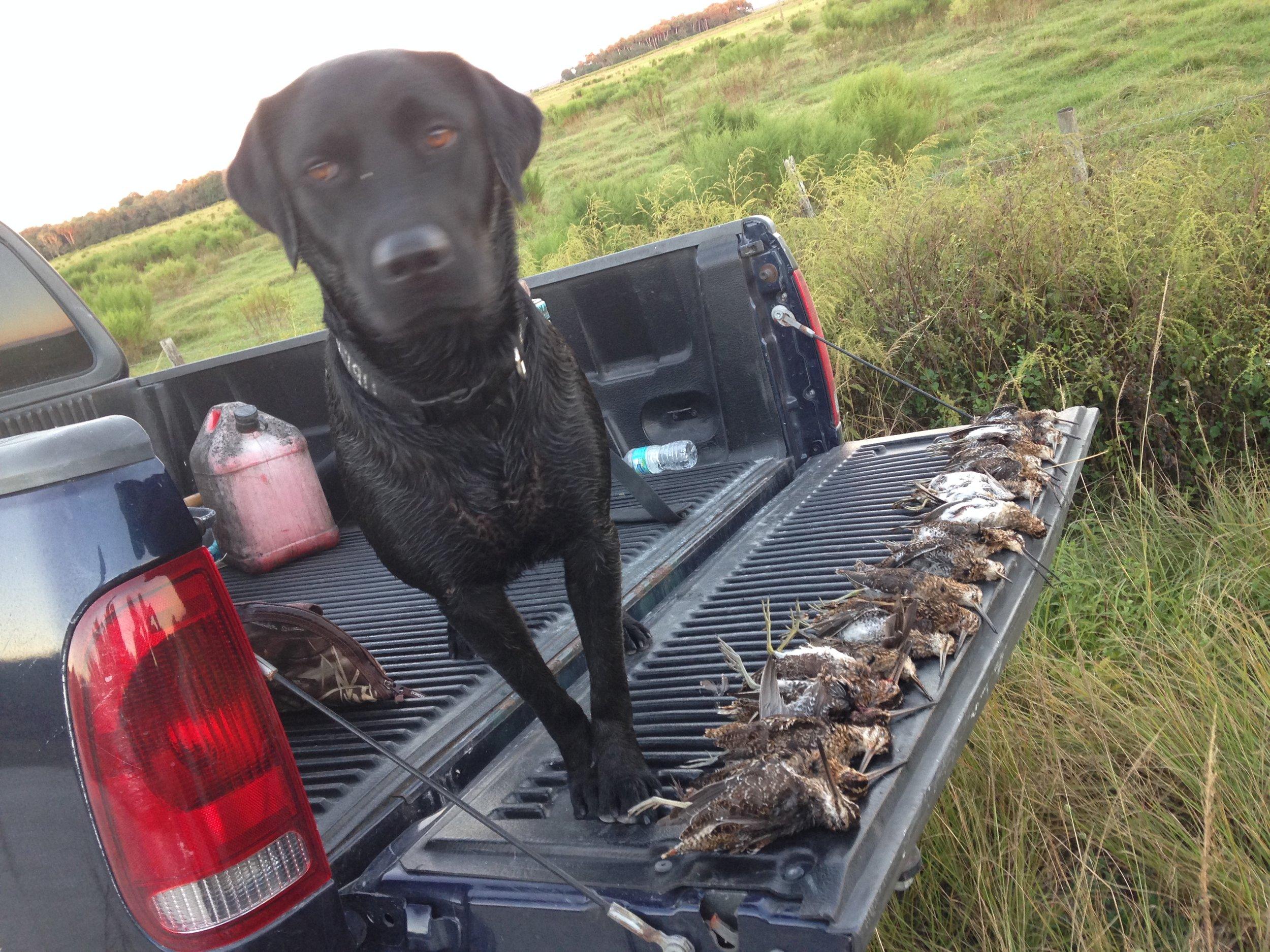 Florida-Snipe-Hunting-Lodge.JPG