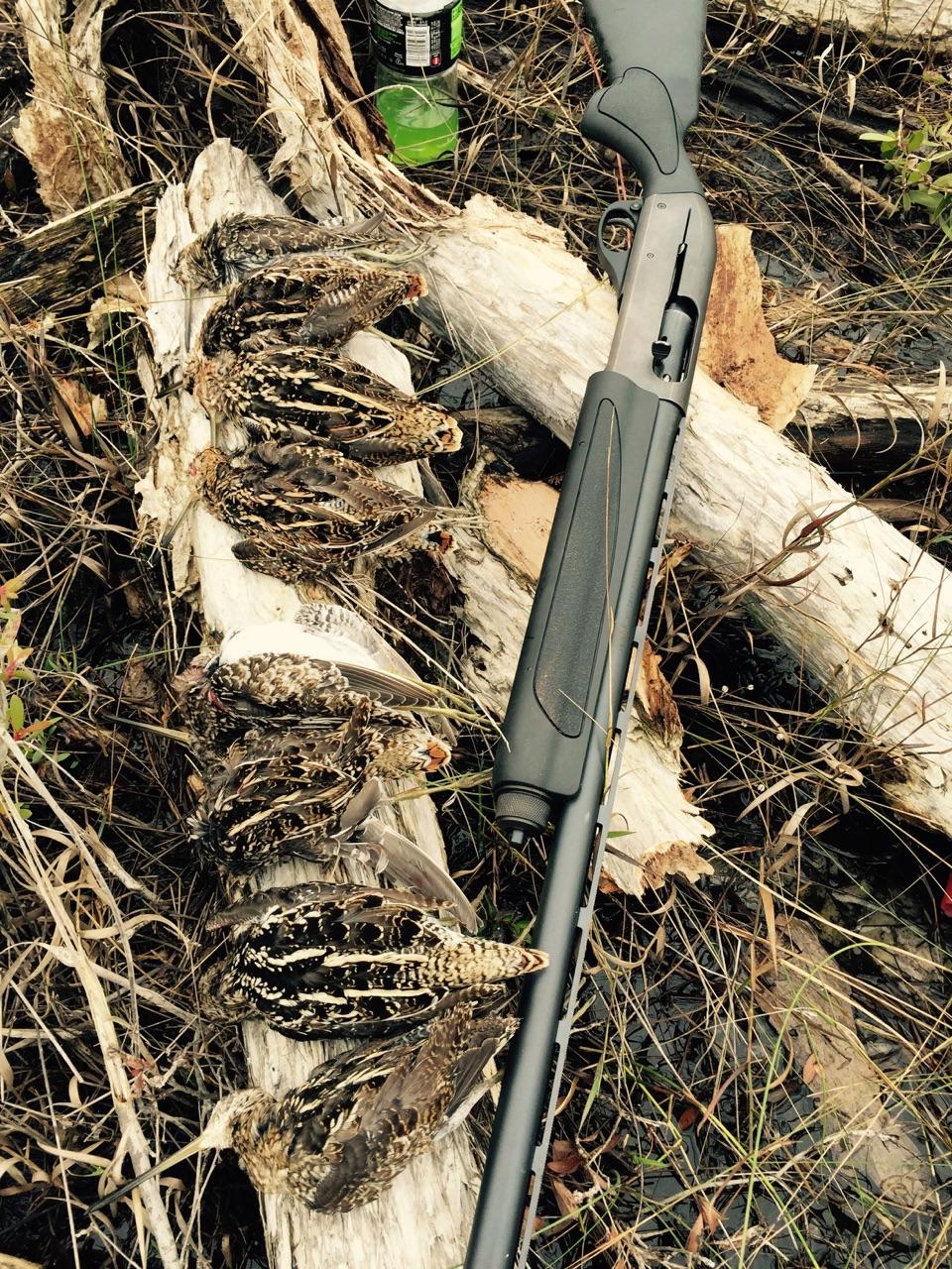Snipe-Hunting-In-Florida.JPG