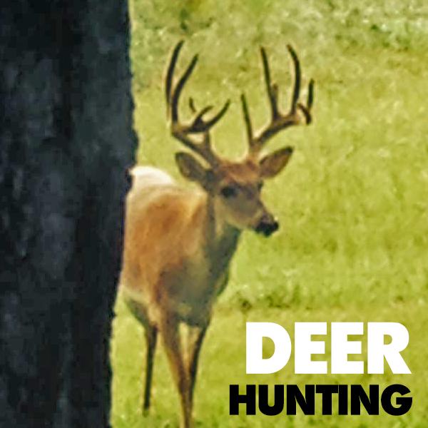 Florida-Deer-Hunting-Trips.jpg