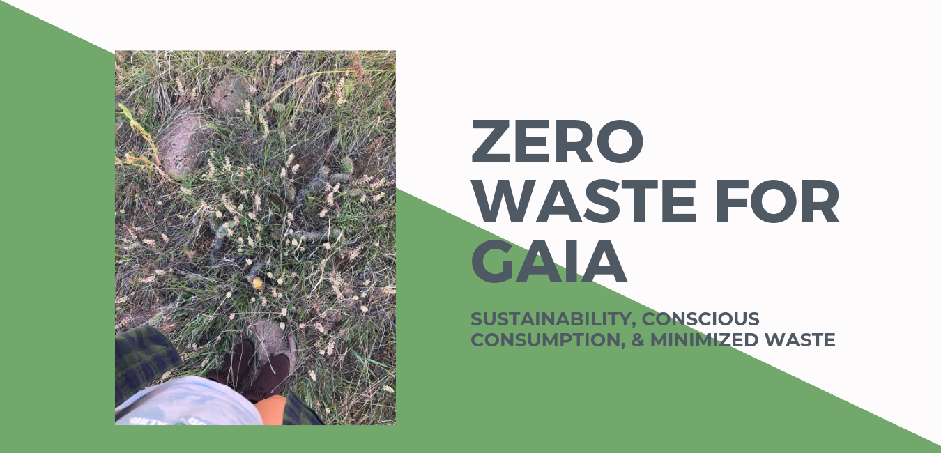 ZERO WASTE MISSION.png