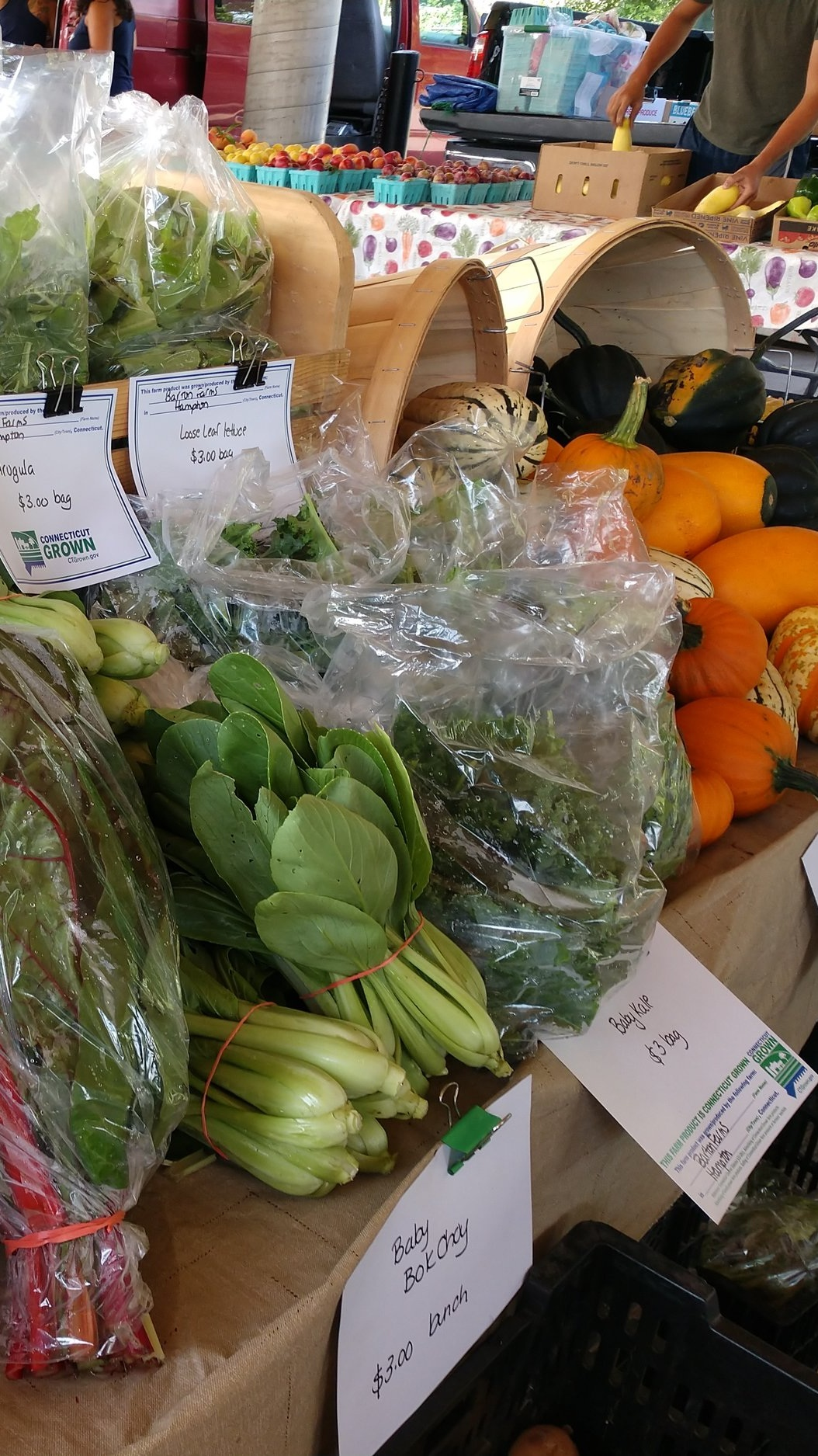 What is CSA? - Community Supported Agriculture (CSA) has become popular throughout the US. When you buy into a CSA you buy a share of the harvest. Each week you pick up your share, allowing you to enjoy fresh produce and locally made products. Many local farms offer CSA's, but many can lack the diversity of items you may like to enjoy. Our solutions is to have multiple farmers contributing to one box. From fruits and veggies to breads, soaps, jams, and flowers. We offer a diverse selection to you every week! Our CSA allows you to get your money's worth while enjoying what your local farmers have in season.