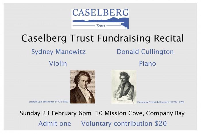 caselberg-fundraising-recital-ticket-february-23-2014-700x467.jpg