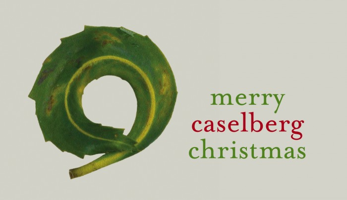 We wish all our friends and supporters a very Merry Christmas and all the best for 2017.